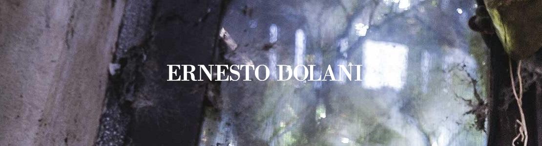 Prange: Ernesto Dolani Herrenschuhe online shoppen